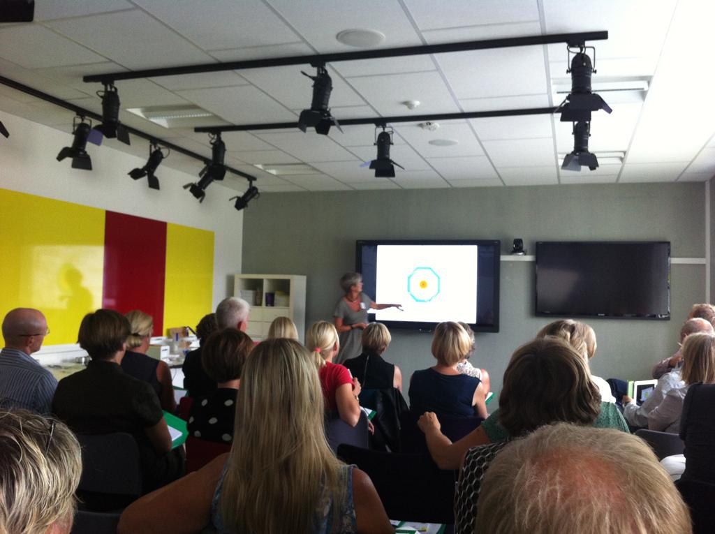 Erfaringer og resultater af Fredericia Kommune