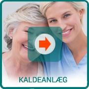 Kaldeanlæg - epilepsialarmer